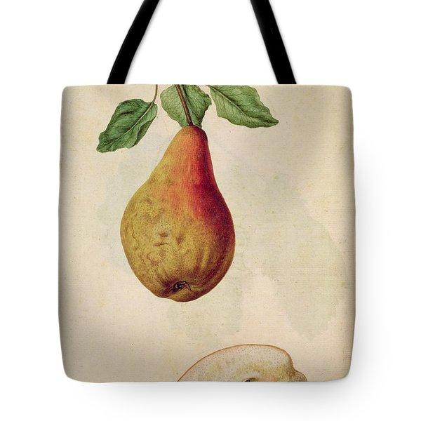 Pear   Pyrus Communis Tote Bag by J le Moyne de Morgues
