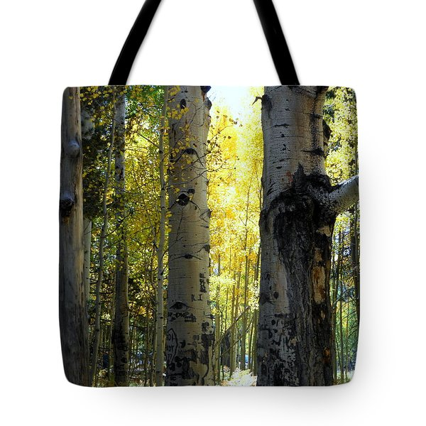 Tote Bag featuring the photograph Peek A Boo by Fred Wilson