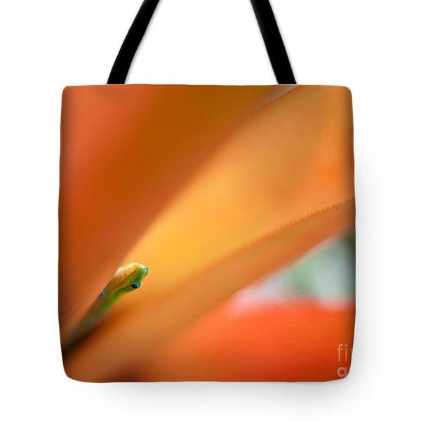 Peek Tote Bag by Mike Reid