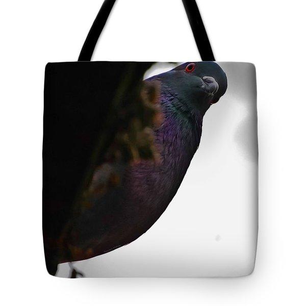 Peeking Pigeon Tote Bag by DigiArt Diaries by Vicky B Fuller