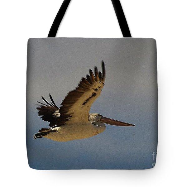 Pelican In Flight 5 Tote Bag by Blair Stuart