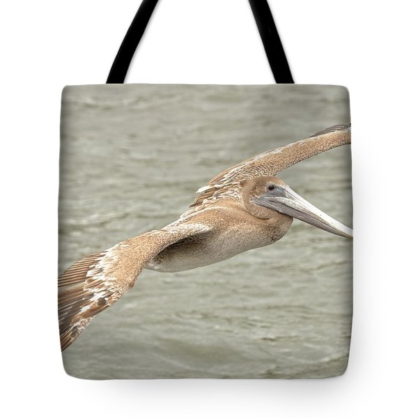 Pelican On The Water Tote Bag by Rick Frost