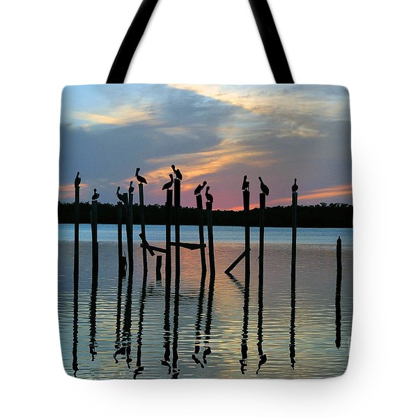 Tote Bag featuring the photograph Pelican Resting End Of Day by Dan Friend