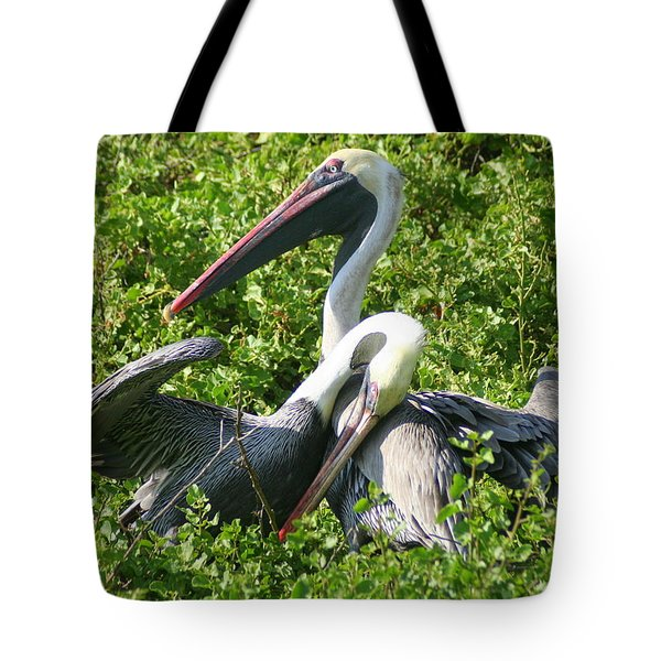 Tote Bag featuring the photograph Pelican Romance by Laurel Talabere