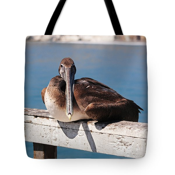 Pelican Taking A Break Tote Bag