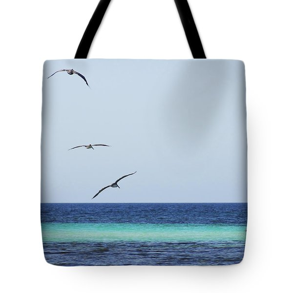 Pelicans In Flight Over Turquoise Blue Water.  Tote Bag by Anne Mott