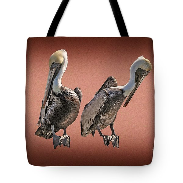 Tote Bag featuring the photograph Pelicans Posing by Dan Friend