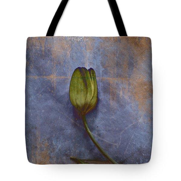 Penchant Naturel - 07at04b3 Tote Bag by Variance Collections
