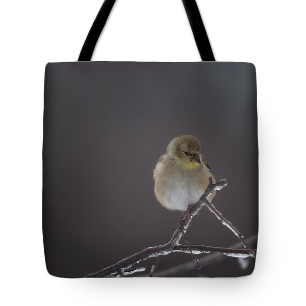 Pensive Tote Bag by Susan Capuano