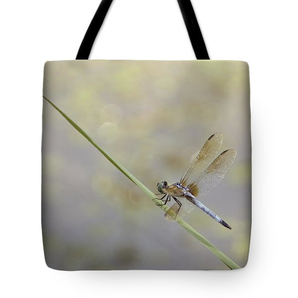Tote Bag featuring the photograph Perched Dragon In Sepia by JD Grimes