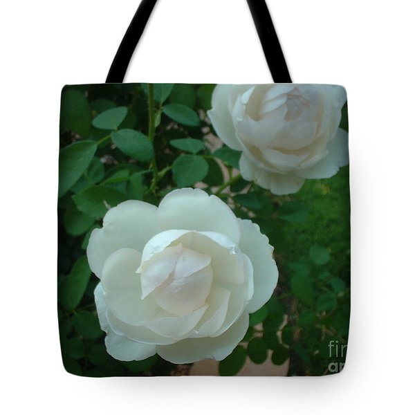 Perfect Pair Tote Bag by Mark Robbins