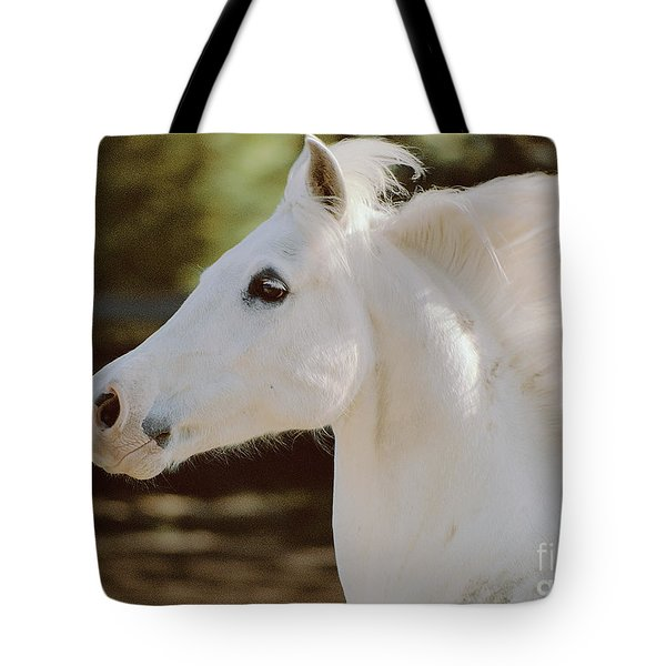 Tote Bag featuring the photograph Pete by Doug Herr