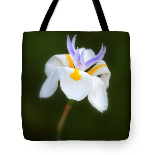 Tote Bag featuring the photograph Petite Flower by Patrick Witz