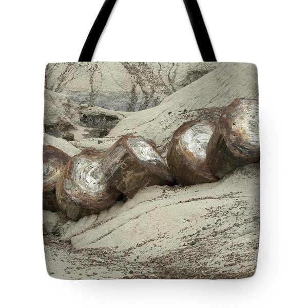 Petrified Forest 1 Tote Bag