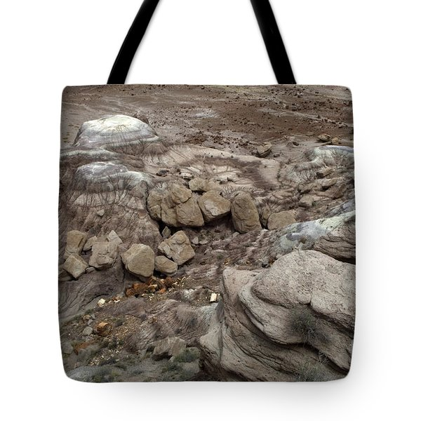 Petrified Forest Landscape 3 Tote Bag