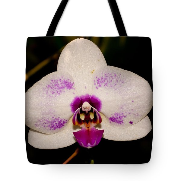 Tote Bag featuring the photograph Phalaenopsis White Orchid by Tikvah's Hope