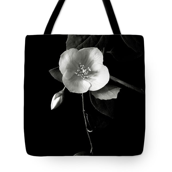 Philadelphus In Black And White Tote Bag