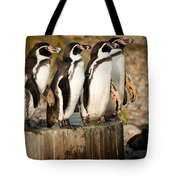 Pick Up A Penguin Tote Bag by Chris Boulton