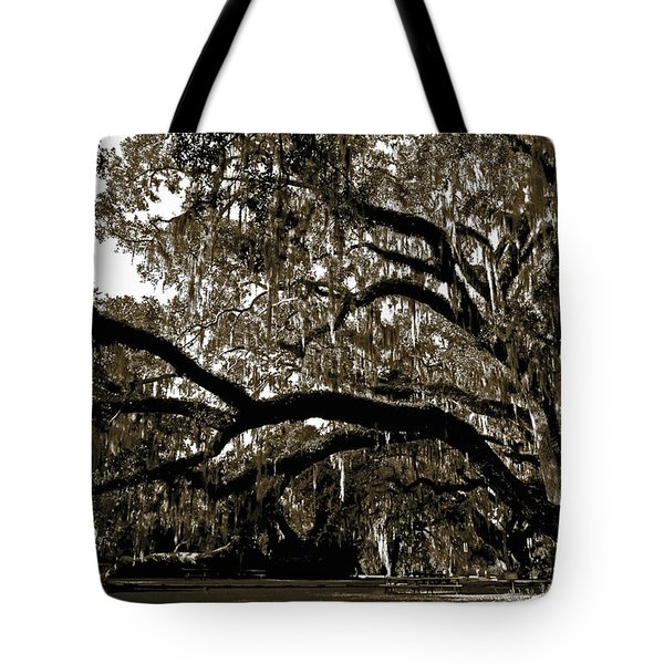 Tote Bag featuring the photograph Picnic Under The Oak by DigiArt Diaries by Vicky B Fuller