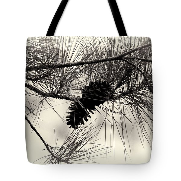 Pine Cones In The Treetops Tote Bag by Douglas Barnard