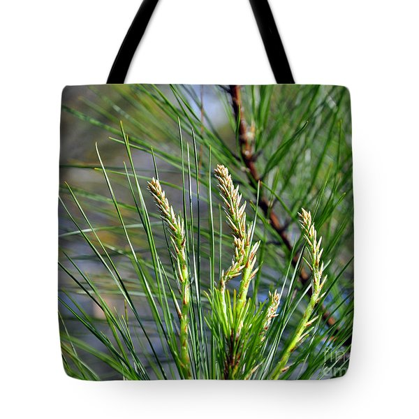 Pine Needles Tote Bag by Al Powell Photography USA