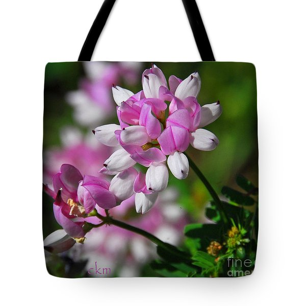 Pink And White Tote Bag by Cindy Manero