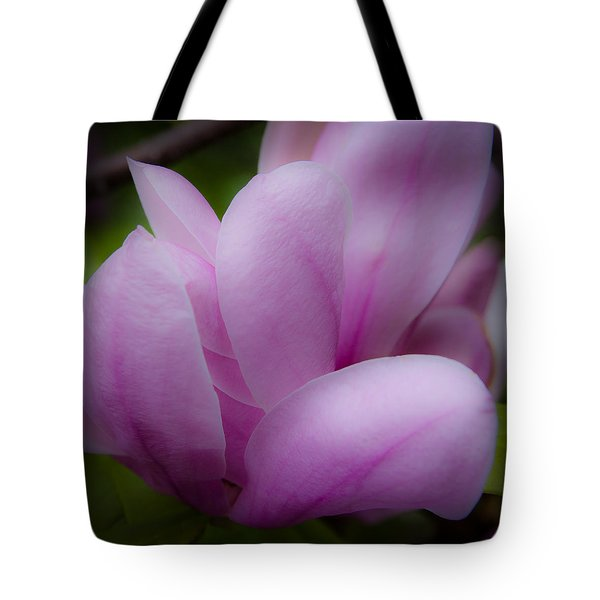 Pink Blossoms Tote Bag by David Patterson