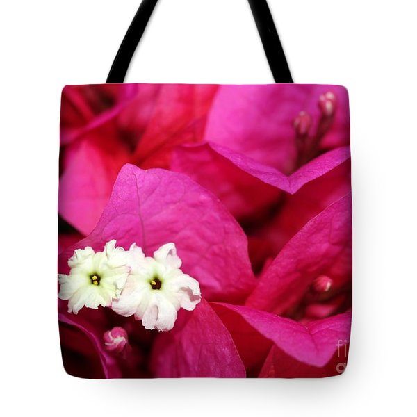 Pink Bouganvillea Tote Bag by Sabrina L Ryan