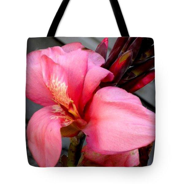 Pink Canna Tote Bag by Renate Nadi Wesley