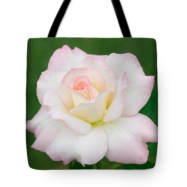 Pink Edge White Rose Tote Bag by Atiketta Sangasaeng