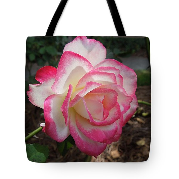 Pink Edges Tote Bag