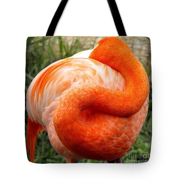 Pink Flamingo Sleep Tote Bag by Rebecca Margraf