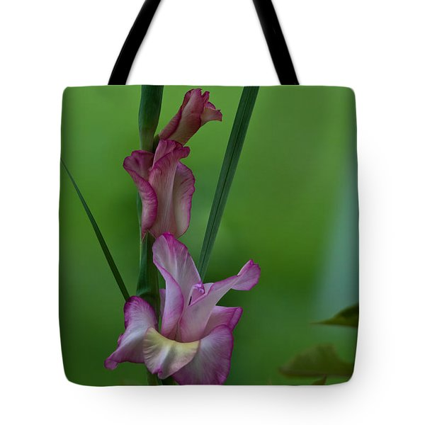 Tote Bag featuring the photograph Pink Gladiolus by Ed Gleichman