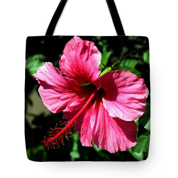 Pink Hibiscus2 Tote Bag