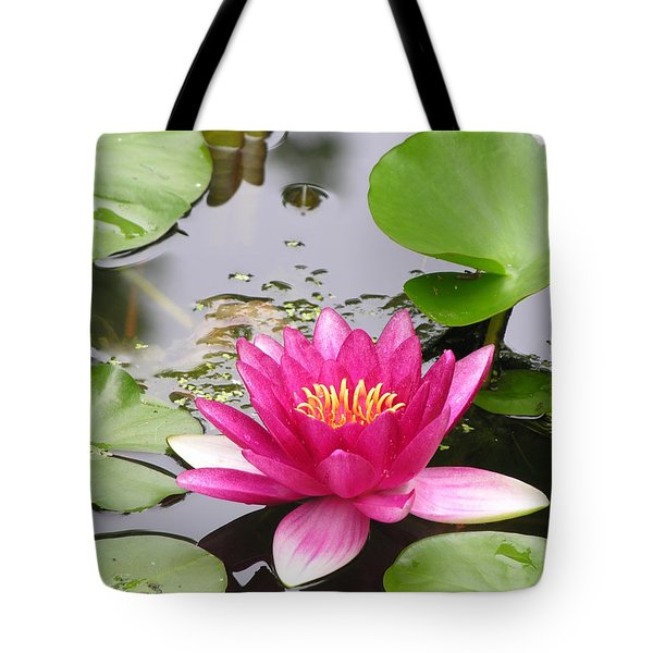 Pink Lily Flower  Tote Bag