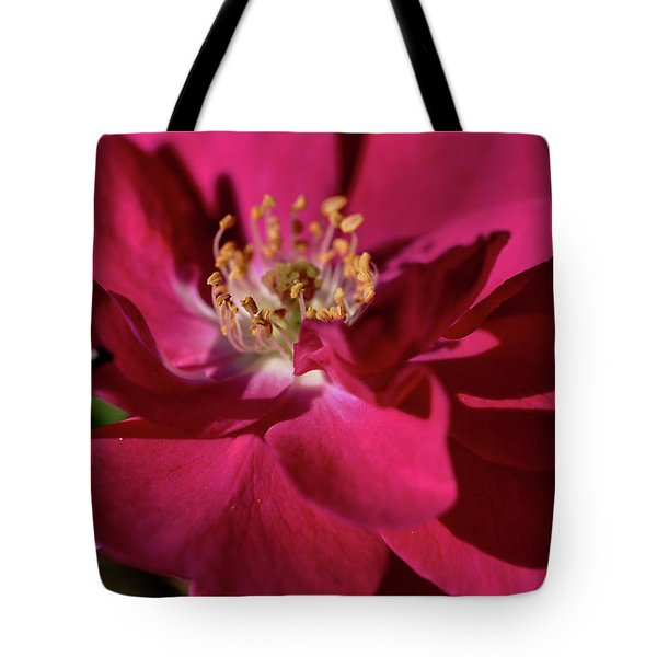 Tote Bag featuring the photograph Pink Of Rose by Joy Watson