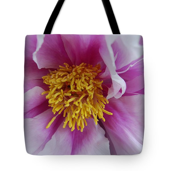 Tote Bag featuring the photograph Pink Peony by Eva Kaufman