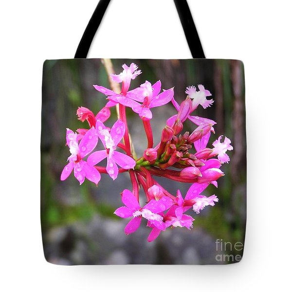 Tote Bag featuring the photograph Inca Trail Orchid by Michele Penner