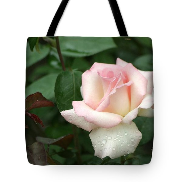 Pink Promise Tote Bag by Living Color Photography Lorraine Lynch