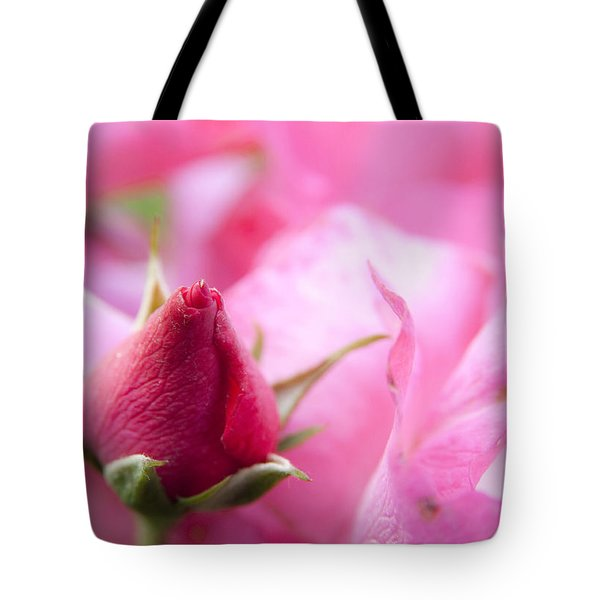 Pink Rose Tote Bag by Jeannette Hunt