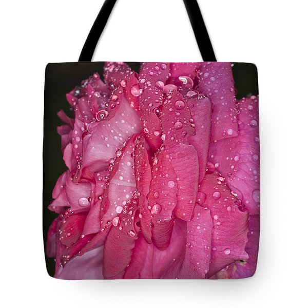 Tote Bag featuring the photograph Pink Rose Wendy Cussons by Steve Purnell