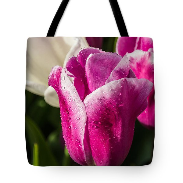 Tote Bag featuring the photograph Pink Tulip by David Gleeson