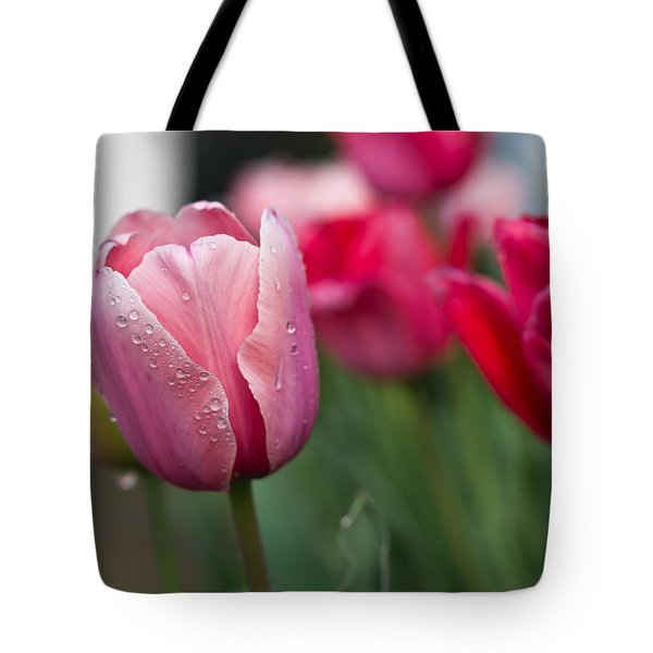 Pink Tulips With Water Drops Tote Bag