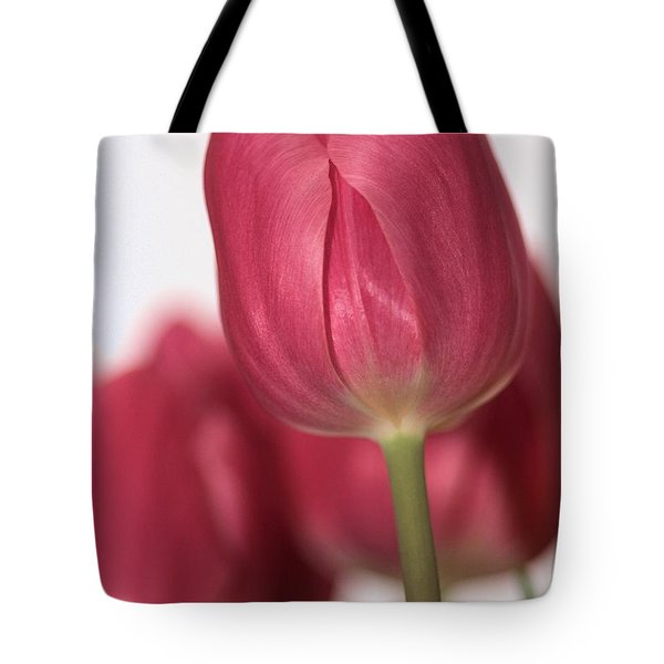 Pink Tullips Tote Bag