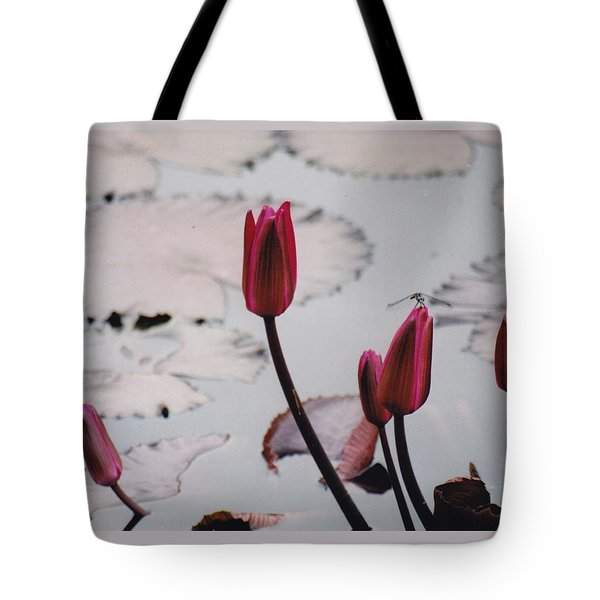 Pink Water Lily Buds Tote Bag
