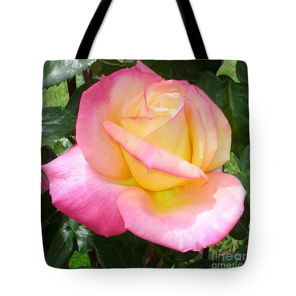 Pink Yellow Beauty Tote Bag by Tanya  Searcy