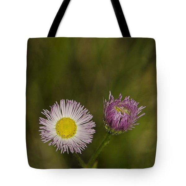 Pinky And Me Tote Bag by LeeAnn McLaneGoetz McLaneGoetzStudioLLCcom