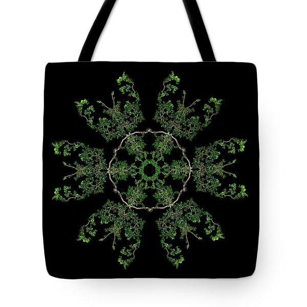 Pinwheel II Tote Bag by Debra and Dave Vanderlaan