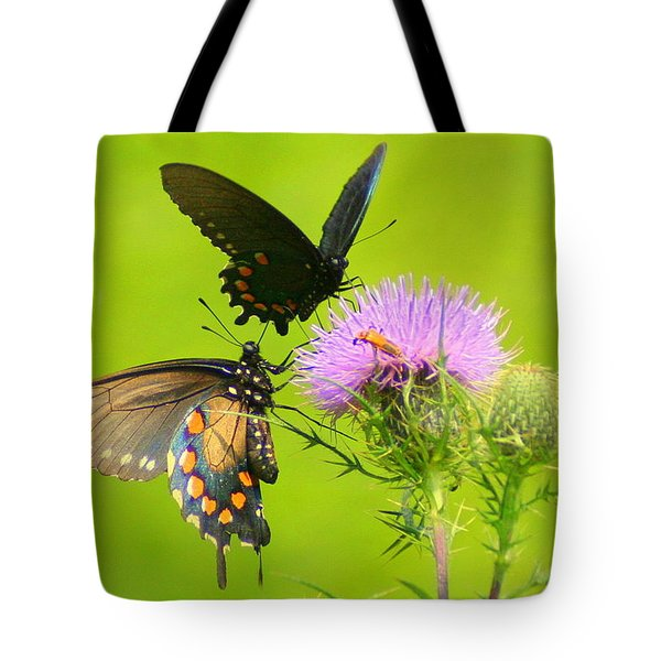 Tote Bag featuring the photograph Pipevine Swallowtails In Tandem by Laurel Talabere