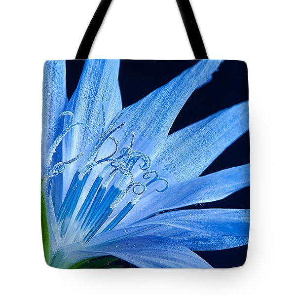 Tote Bag featuring the photograph Pistil's Of Chicory by Randall Branham